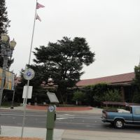 city hall,redwood city, Редвуд-Сити