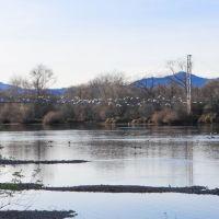 Sacramento River, Redding, Реддинг