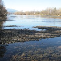 Sacramento River Site 2 (Right Bank) - Dewatered Salmon Redd at Flow 4500 cfs 1/27/2011, Реддинг