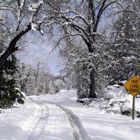 Snowy Road 425C, Редландс