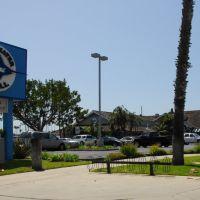 Bluewater Grill Seafood, REDONDO BEACH, Los Angeles (レドンド・ビーチ), Редондо-Бич