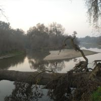 Kings River Trail (Jan 08, Behind College), Ридли
