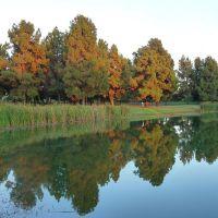 Eldorado Park Lake, Россмур