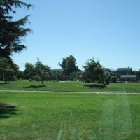 Salinas Park, Салинас