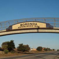Boronda, Салинас