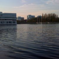 Redwood Shores Lagoon 1, Сан-Карлос