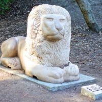Twin Pines Park Lion Sculpture, Сан-Карлос