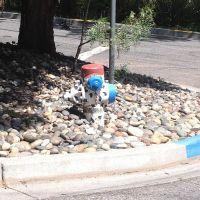 Belmont Fire Hydrant, Сан-Карлос