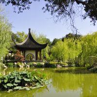 China Garden, Huntington Libary, Pasadena, San Marino ,CA,USA, Сан-Марино