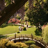 Huntington Gardens--Japanese Garden, Сан-Марино