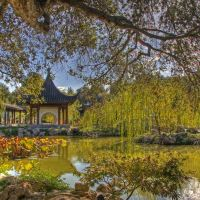 Chinese Garden, The Huntington, San Marino California, Сан-Марино