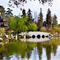 Chinese Garden @ the Huntington Library, San Marino, CA, Сан-Марино