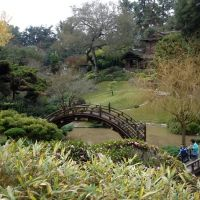 Japanese Garden at Huntington Library (San Marino, California, USA), Сан-Марино