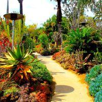 The Huntington Art Museum and Botanical Gardens, San Marino, CA, Сан-Марино