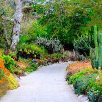 The Huntington Gardens, San Marino, CA, Сан-Марино