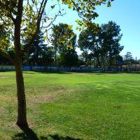 San Fernando, CA: View NW, Las Palmas Park, 2011, Сан-Фернандо