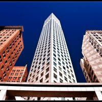 Angles, Сан-Франциско