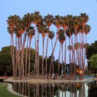 Las Palmas Park, Саннивейл