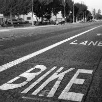 Bike Lane, Саннивейл