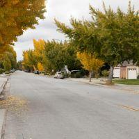 McKinley, Sunnyvale, California, Саннивейл