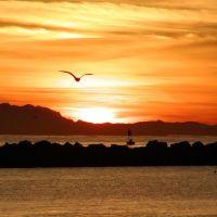 Santa Barbara Sunrise, Санта-Барбара