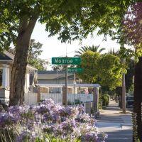 Monroe St/Fremont St, Санта-Клара
