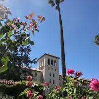 Santa Clara University Building and Palm Tree, Санта-Клара