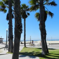 """""""Buen día para un paseo en bici"""" *, Санта-Моника"""