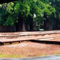 Santa Rosa Julliard Park Bocce Courts_Panorama, Санта-Роза