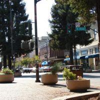 Santa Rosa, California, Санта-Роза
