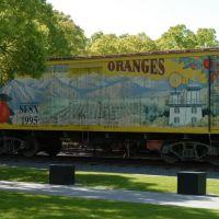 """Santa Fe Springs Oranges"" - McMenamin, Санта-Фе-Спрингс"