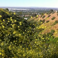 Hellman Park Trail, Санта-Фе-Спрингс