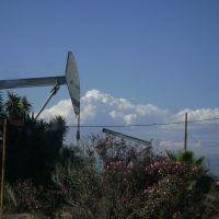 oil, Санта-Фе-Спрингс