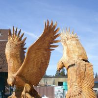 Eagle Carvings, Lake Tahoe, 2007, Саут-Лейк-Тахо