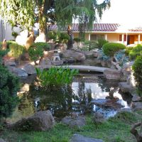 Koi pond at the Marysville Buddhist Church. 125 B St., Marysville, California, Саут-Юба