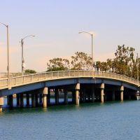 in Belmont Shore, Long Beach, CA, Сил-Бич