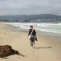 Monterey Beach 06, Сисайд