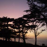 Playa de Monterey, Сисайд