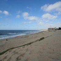 Monterey Beach Resort, Сисайд
