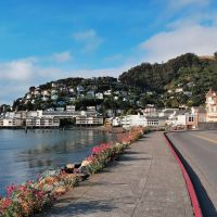 Houses nestled on the hill and the waterfront Sausalito, Marin, California, Сусалито