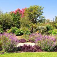 Los Angeles County Arboratum 10-02-2011, Сьерра-Мадре