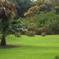 Los Angeles Arboretum, Сьерра-Мадре
