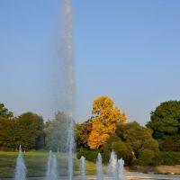 LA Arboretum, Сьерра-Мадре