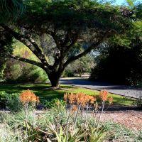 The Arboretum of Los Angeles County, CaliforniaThe Arboretum of Los Angeles County, California, Сьерра-Мадре
