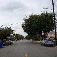 E. Camino Real Ave., Arcadia, CA, Темпл-Сити