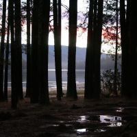 Sunrise at Bass Lake, Укия
