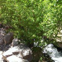 Rock Creek, Фаулер