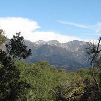 Pasadena View, Флинтридж
