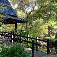 Descanso Gardens • Japanese Pavillion • La Canada/Flintridge, Флинтридж