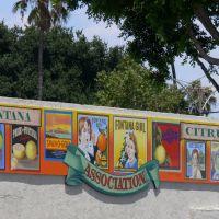 Murals Fruit Labels, Фонтана